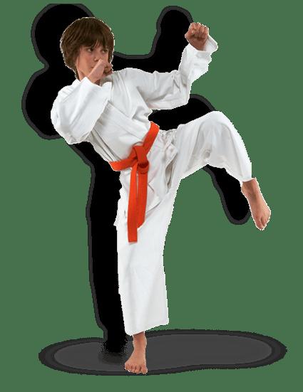kids martial arts landing page